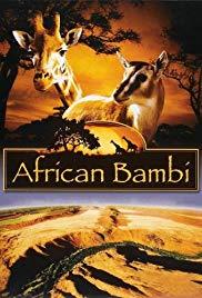 african-bambi