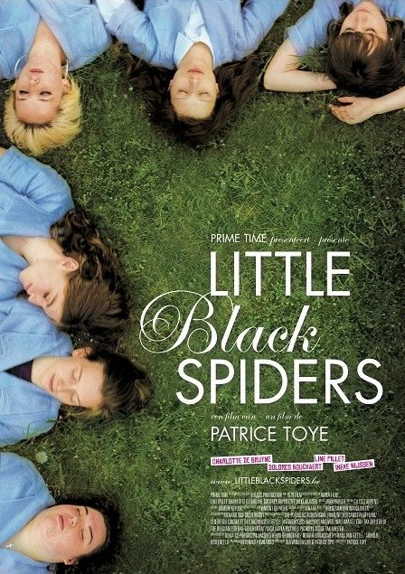 little-black-spiders