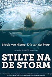 stilte-na-de-storm